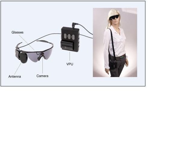 The external equipment includes glasses, a video processing unit (VPU) and a cable - Sputnik International