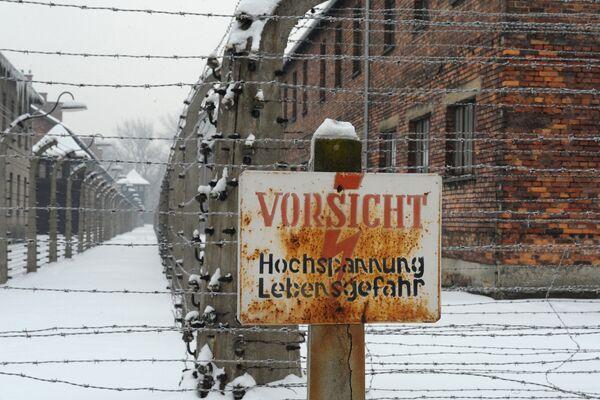 50 Alleged Auschwitz Guards Face Jail in Germany - Sputnik International