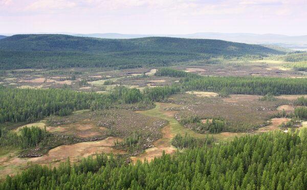 The site of Tunguska meteorite fall. Archive - Sputnik International