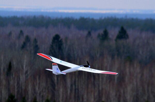 Drones to Keep Tabs on Russia's Bears and Poachers - Sputnik International