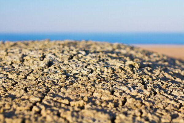 Aral Sea Stopped Shrinking Says Russian Scientist - Sputnik International