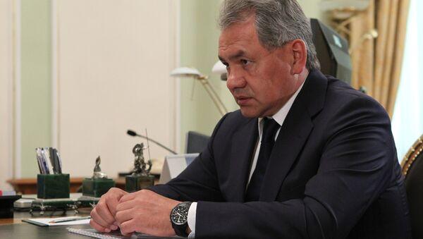 Defense Minister Sergei Shoigu - Sputnik International