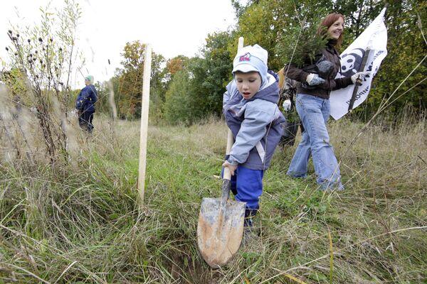 700,000 Volunteers to Plant Trees in Russia - Sputnik International