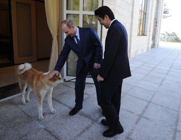 Vladimir Putin brought along his pet dog Yume (Dream in Japanese) - Sputnik International