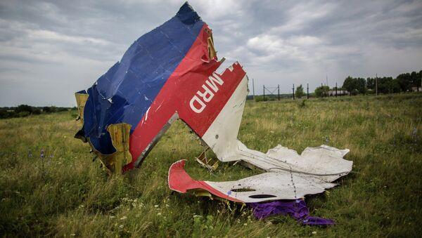 Crash site of Malaysian Boeing-777 - Sputnik International