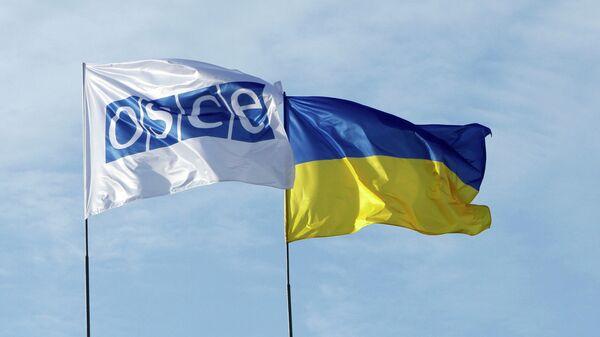 East Ukraine Militia Threatens to Stop Cooperating With OSCE in Plane Crash Probe - Sputnik International
