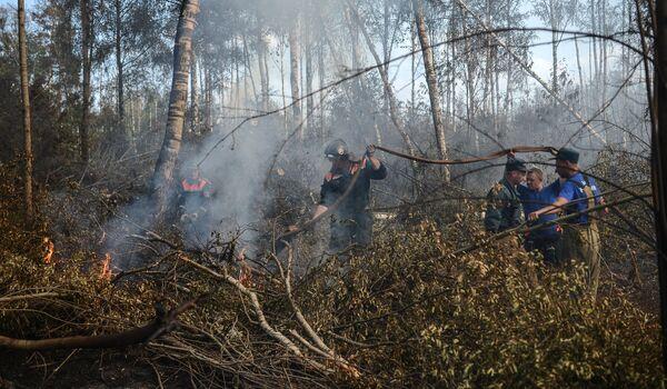 Wildfires Rage in Russia's Tver Region - Sputnik International