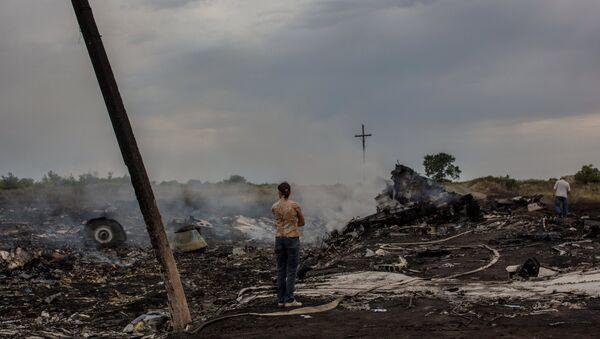 The crash site of the Malaysian Boeing 777 outside Shakhtyorsk, Donetsk Region - Sputnik International