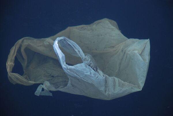 California bans single-use plastic bags statewide - Sputnik International