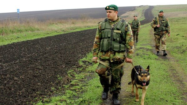 Poroshenko says that Ukraine is preparing to open border crossings on the eastern border with Russia - Sputnik International